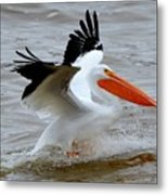 Take Off Metal Print by Janet Moss