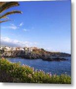 Tenerife - Alcala Metal Print