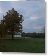 That Tree, 26th October, 2015 Metal Print