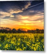 The April Farm Metal Print
