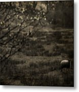 The Countryside Metal Print
