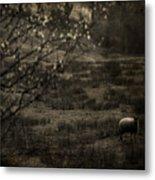 The Countryside Metal Print