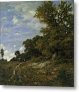 The Edge Of The Woods At Monts-girard, Fontainebleau Forest Metal Print