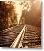 The Journey Metal Print by Lisa Russo