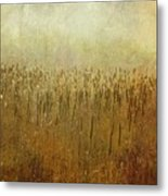 The Marsh Metal Print