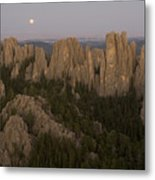 The Needles Protrude From Forests Metal Print