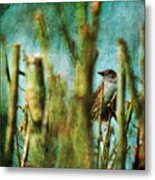 The Thrush Metal Print