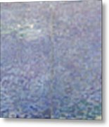 The Water Lilies, Morning Metal Print