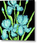 Three  Blue Irises Metal Print