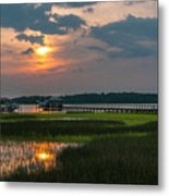 Thriving Beauty Of The Lowcountry Metal Print