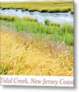 Tidal Creek Mud Flat At Low Tide Metal Print