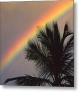 Top Of A Palm Tree Metal Print