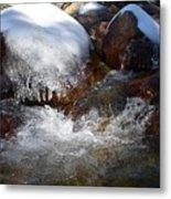 Trail To Tokopah Falls Metal Print