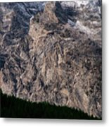 Teton Tree Line  Metal Print
