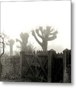 Trees In The Fog Metal Print