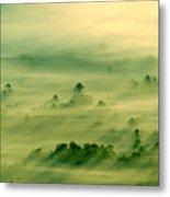 Trees Thru The Mist. Metal Print