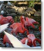 Tropical Sanctuary Metal Print