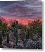 Tucson Sunset Metal Print