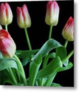 Tulip Bouquet Metal Print by Tracy Hall