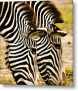 Twins In Stripes Metal Print