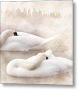 Two Swans Metal Print by Svetlana Sewell