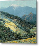 Valley Splendor Metal Print