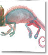 Veiled Chameleon X-ray Metal Print