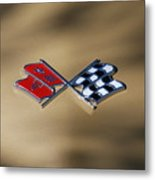 Vette Flags Metal Print