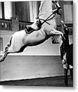 Riding School, Vienna Metal Print