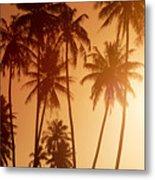 View Of Tahiti Metal Print