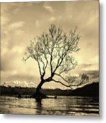 Wanaka Tree - New Zealand Metal Print