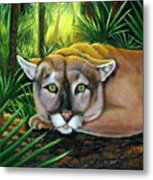 Watching  Florida Panther Metal Print
