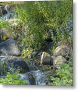 Water And Wildflowers Metal Print