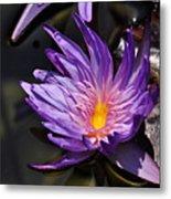 Water Floral Metal Print