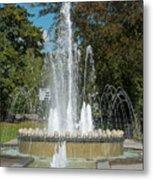 Water Fountain  Metal Print