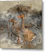 Watercolour Painting Of Beautiful Greylag Goose Anser Anser In W Metal Print