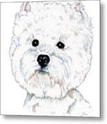 West Highland White Terrier, Westie Metal Print