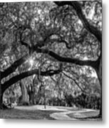 When I Dream... Metal Print