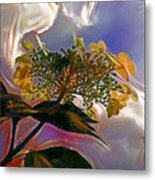 White Flower On Blue Sky Metal Print