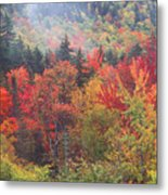 White Mountain Foliage Metal Print
