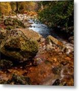 Wicklow Stream Metal Print