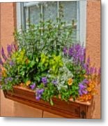 Window Box Blooms Metal Print