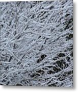 Winter At Dusk Metal Print