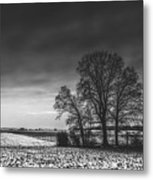 Winter Fields Metal Print