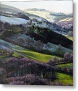 Winter In North Wales Metal Print