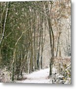 Winter Journey Metal Print by Andy Smy