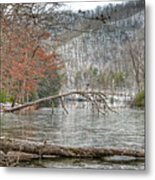 Winter Landscape At Hungry Mother State Park Metal Print