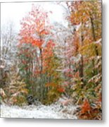 Winterfall  Metal Print