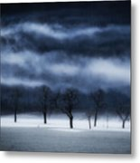 Winter's Passion Metal Print