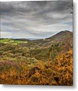 Wrekin View Metal Print